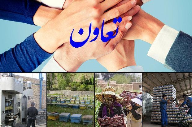 راه اندازی تعاونی های صادراتی در استان زنجان