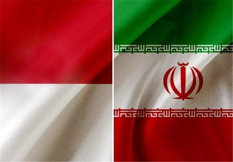 رئیس مجلس اندونزی سه شنبه وارد تهران می گردد