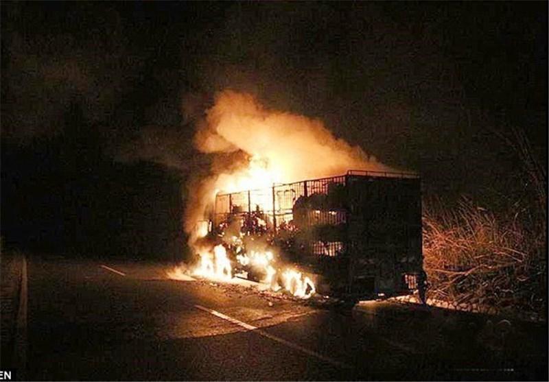 زنده زنده سوختن 300 بز در آتش سوزی کامیون در چین