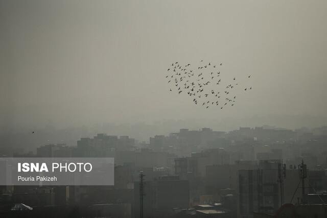 از کاهش غلظت ازن در تهران تا پیش بینی افزایش روزهای آلوده در پاییز