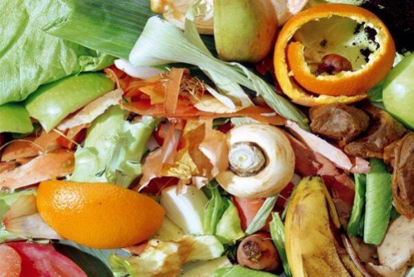 تبدیل ضایعات میوه به محصولات آرایشی بهداشتی توسط محققان کشور